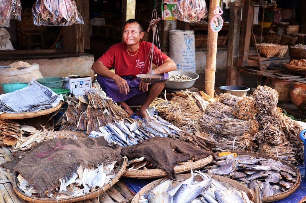 arquiteto-vendendo-seu-peixe-vendas-arquitetura
